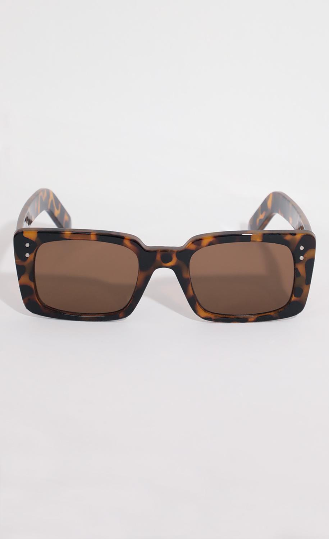 Sunset Square Sunglasses In Brown Tortoiseshell