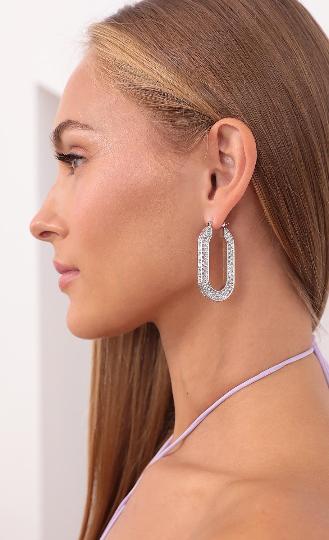 Luck of The Horseshoe Crystal Earrings