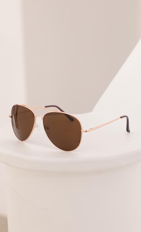 Mallory Aviator Sunglasses in Brown