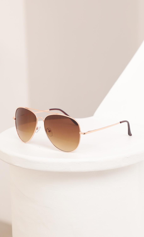 Mallory Aviator Sunglasses in Brown Ombre