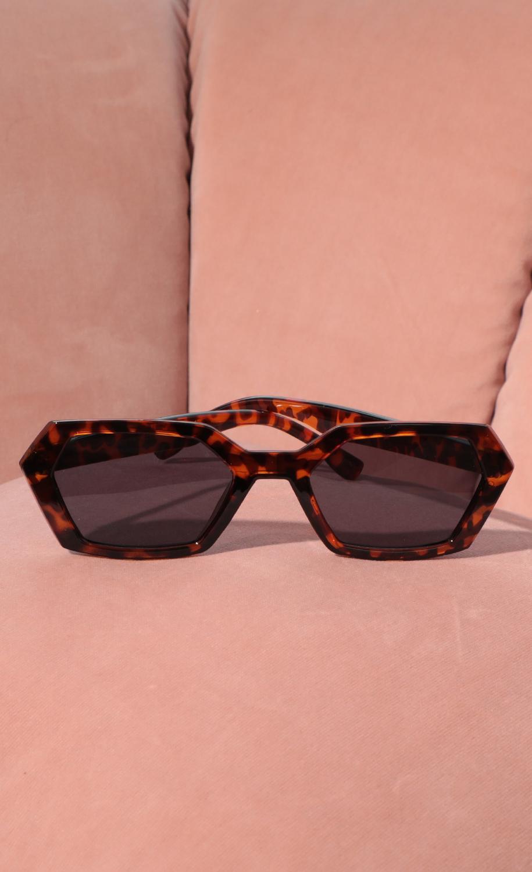 Geometric Trendy Sunglasses in Tortise